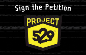 529-petition