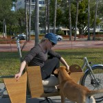 This Metrofiets cargo bike has a custom dog door for Katie