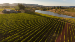 Harvest Century-Montinore Estates winery